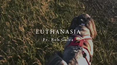 Fr. Rob Galea: Euthanasia